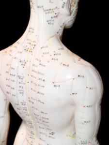 Imagine Your Body As Land--The Meridians Are Your Body's Main Highways